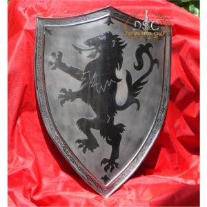 DSC-S117 DRAGON KNIGHT SHIELD